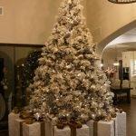 Trish Nash Team 2019 Holiday Party